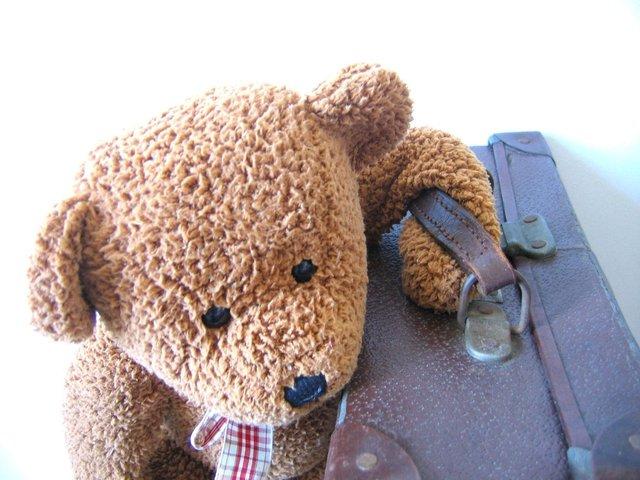plyšový medvídek s kufrem
